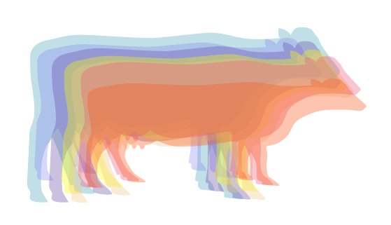 Have a Cow, Man